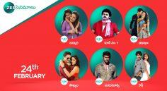 Zee Cinemalu (24th February)