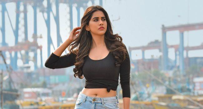 nabha-natesh-solo-brathuke-so-better-movie 1