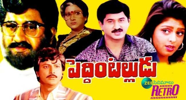 Peddintalludu - నగ్మా మొదటి సినిమాకు 30 ఏళ్లు