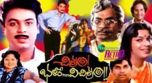 Chitram Bhalare Vichitram Movie completes 30 Years